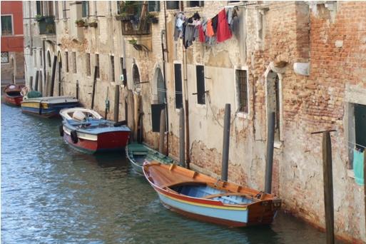 Life in a Venice Neighborhood