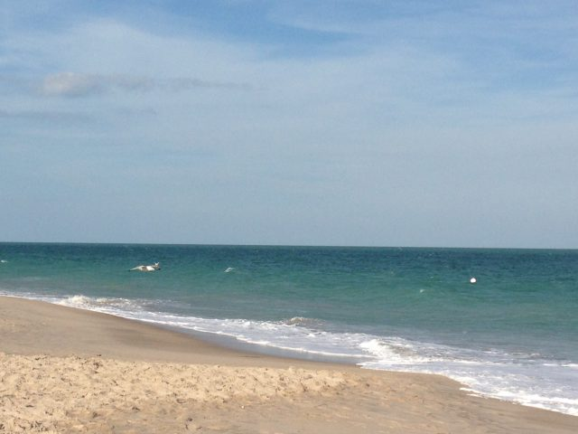 Vero Beach Photo by Margie Miklas