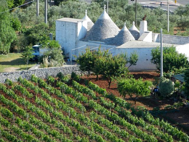 Puglia resized Photo by Margie Miklas