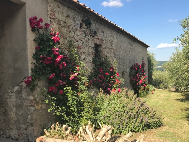 Montestigliano Photo by Margie Mikkas