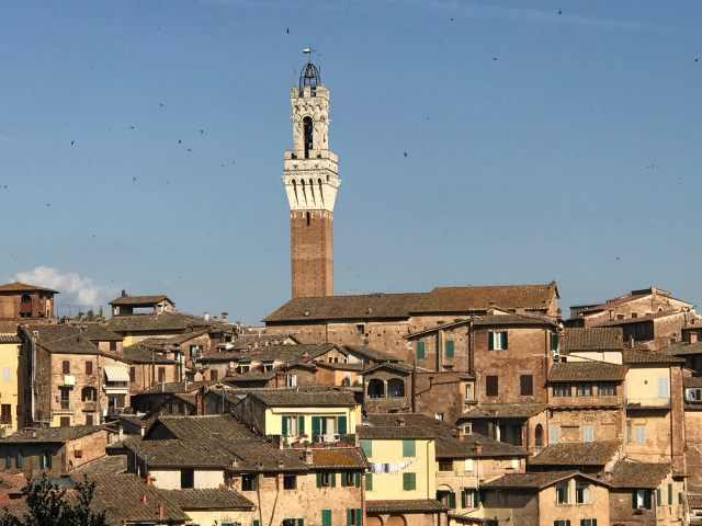 Siena photo by Margie Miklas